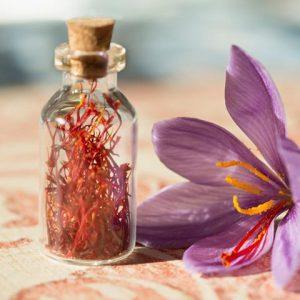 آیا پودر عصاره گیاه زعفران سراج نیز تولید می شود؟