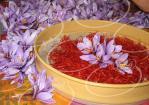 خرید شربت زعفران در کشور ارمنستان