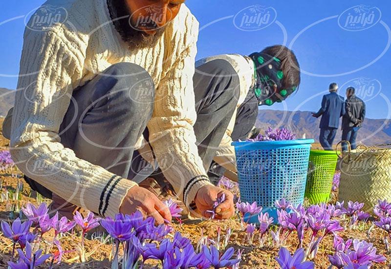 قیمت 1 گرم زعفران با بسته بندی خاتم